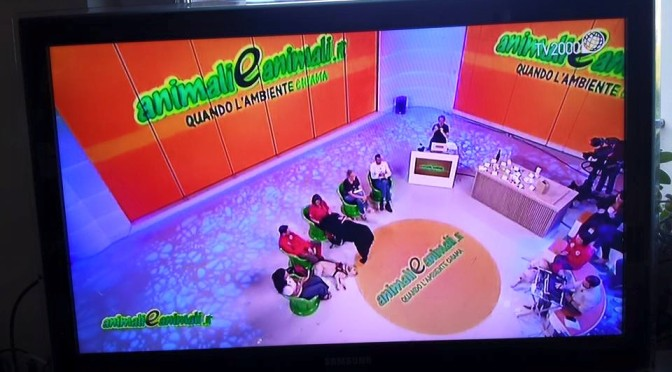 Animali e Animali – TV 2000